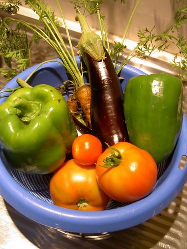Cornucopia (AKA colander) of vegies