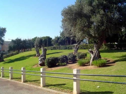 Parque Son Xigala II