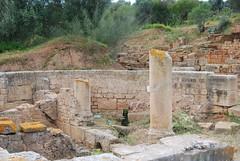 DSC_0146.JPG (tenguins) Tags: africa castle architecture ruins mosque arabic adventure morocco berber fortress islamic rabat chelle siteseeing chella romanruins