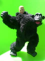 GI JOE Operation Undercover Gorilla (8 Skeins of Danger) Tags: black green gijoe toy monkey costume gorilla fuzzy action joe suit disguise figure spy ape gi snappy undercover banter 8skeinsofdanger