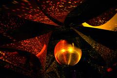 . (Le Cercle Rouge) Tags: park paris france colors rouge gold treasure couleurs or luna le oro cercle trsor pariz zlato lecerclerouge