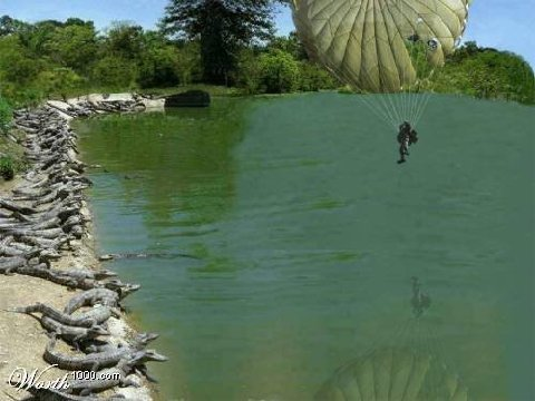 Alligator Parachute.jpg