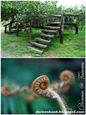 宜蘭 Yilan: 香格里拉休閒農場