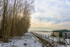 Winter_Beuningen-3 (stevefge) Tags: beuningen winter gelderland snow sneeuw trees bomen boerderij farm ditch sloot shed landscape nederland netherlands nature nl natuur nederlandvandaag reflectyourworld