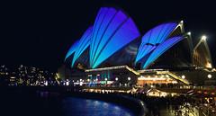 Sydney Opera House   Lighting the Sails (Leighton Wallis) Tags: blue music festival night lights sydney vivid australia circularquay nsw ideas sydneyoperahouse bennelongpoint lightingthesails vividsydney2011