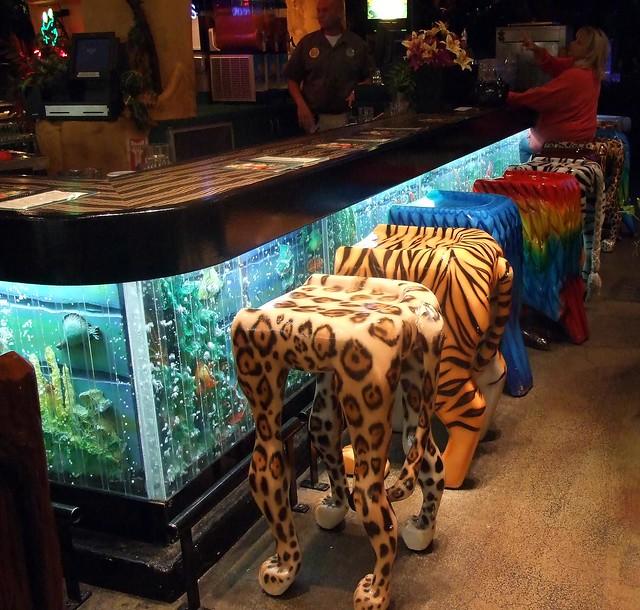 The Most Beautiful Bar Aquariums Barwhiz Blog