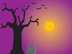 old-tree-1600