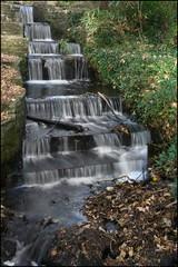 cascade (Capt' Gorgeous) Tags: park house abbey animals gardens stately margam margampark bensalter