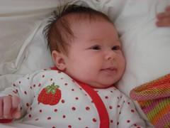 Sadie, 7 weeks
