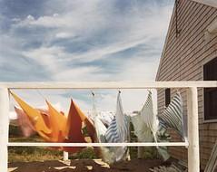 JOEL MEYEROWITZ Laundry, Cape Cod, 1982