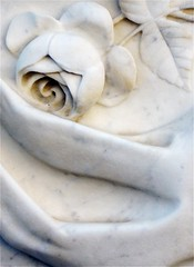 Marble Rose (scilit) Tags: sculpture usa white macro art cemetery graveyard rose georgia tombstone relief explore marble soe goldstar macon smorgasbord excellentphotographer top20white everydayissunday goldstaraward