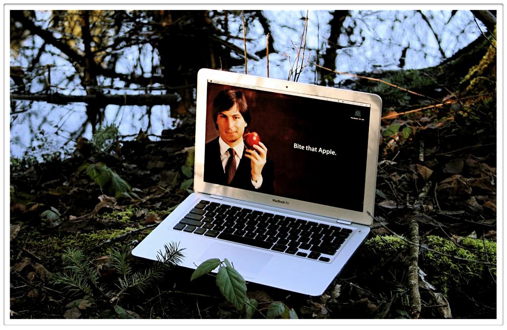 MacBook Air Wild 6