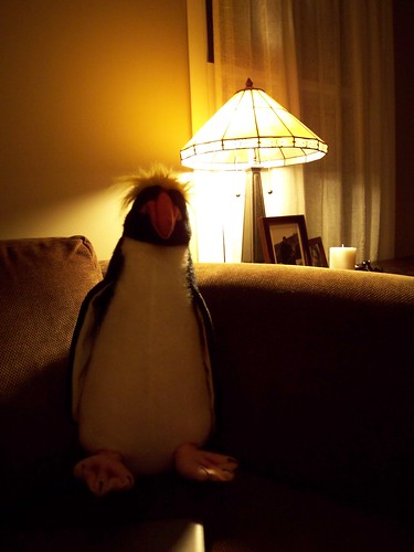 The most technologically advanced penguin on the web (Eye.Fi test 1)