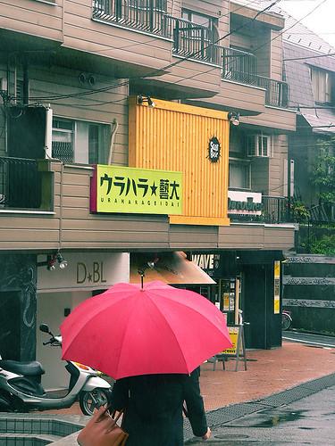 우산과 하라주쿠 골목