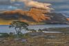 Slioch Shadows (2) (Shuggie!!) Tags: clouds eveninglight grasses hdr highlands hills landscape lochmaree mountains pine rocks shadows torridon trees westerross zenfolio karl williams karlwilliams