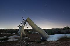 (spacetimecurvature) Tags: longexposure nightphotography statue night dinosaur neighborhood startrails applevalley