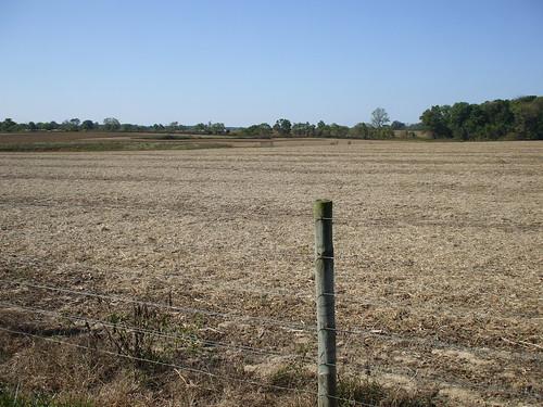 Dead field