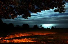 Orange and Black (shaymurphy) Tags: ireland light sea colour tree field night noche natural nikond70 nacht greystones artificial irland eire moonlight wicklow nuit notte irlanda irlande noc y ierland  irska    irlandia nikkor1870 irsko   airija irlanti  iirimaa   rorszg thegardenofzen   rija rsko   explore118nov272008