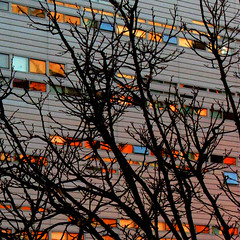 (fusion-of-horizons) Tags: autumn fall architecture campus de photography photo university fotografie photos cincinnati architect thom uc mayne morphosis thommayne artisticexpression arhitectura arhitect brillianteyejewel colourartaward arhitectur theperfectphotographer universityofcincinnatirecreationcenter