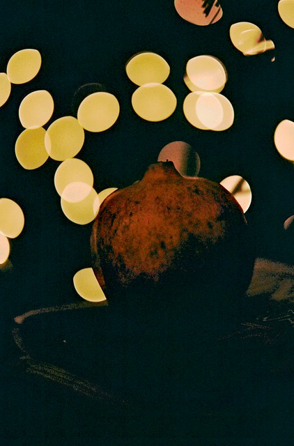 pomegranate & xmas lights