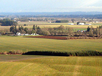 Willamette Valley from Mt Angel