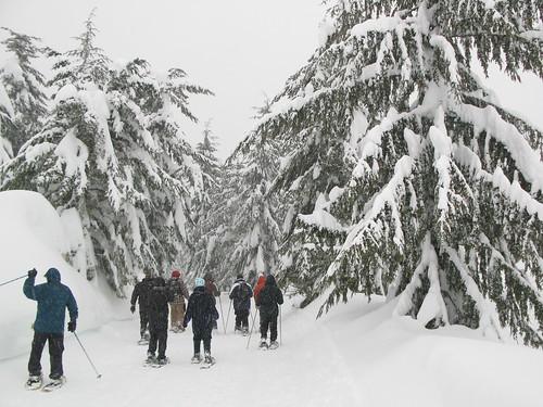 snowshoe trip 21.jpg