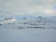 Hungurfit_2005_00013 (SteinarSig) Tags: snow mountains iceland skiing cross country xc sig sar sleds steinar icelandic pulks fbsr sigursson sigurdsson hungurfit gnguski landsbjrg steinarsigursson steinarsig