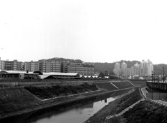 xin-din river () Tags: bw expiredfilm tamsuiriver fujineopanss zeissikonta5206x45