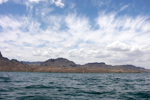 lake_havasu_memorial_weekend (6)