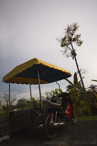 Lone bike.