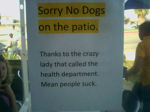 No dogs on the patio. Thanks to the crazy lady that called the health department. Mean people suck.