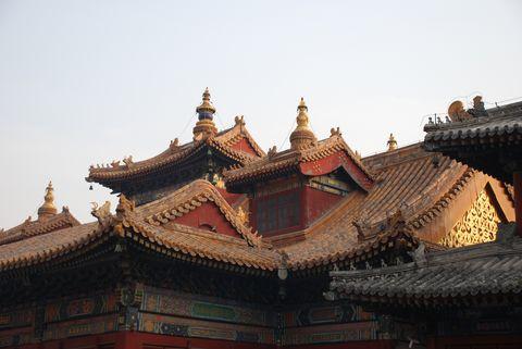 Pekin - temple des Lamas (20) [480]
