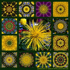 De Phili_Chen, Dahlia 14 (Lucy Nieto) Tags: wallpaper colors yellow mxico catchycolors background digitalart kaleidoscope colores amarillo artedigital kaleidoscopes specialeffects caleidoscope kaleider digitalabstract colourartaward colorartaward kaleidoscopesonly philichen dahlia14 favabs