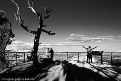 Catching space, being a tree (Hughes Lglise-Bataille) Tags: park travel sunset blackandwhite bw usa topf25 us noiretblanc canyon national bryce streetphoto nocrop 2007 yatta topv1000