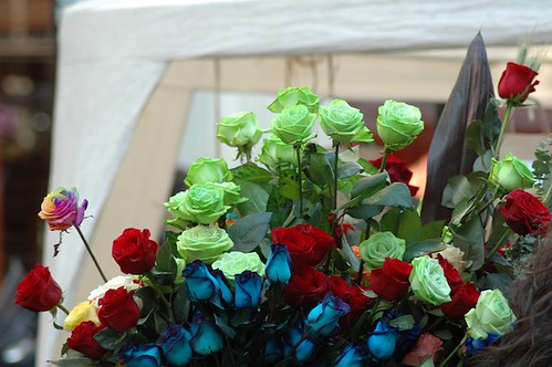 Flores de varios colores en Rambla Catalunya
