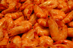 Shrimp Bowl (sener_tr) Tags: barcelona travel vacation macro animal d50 photo spain nikon europa europe market shrimp prawns catalonia espana photograph lobster seafood animales catalunya animaux deniz animali shrimps tier prawn dyr gezi espanya avrupa hayvan barselona seyahat balk ispanya turkishphotographer rn katalunya karides zwierzat pavurya istakoz katalonya zvirat animalsk dierlijke elainten animaliskt