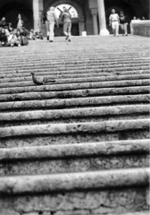 (Luce-Chiara #1) Tags: palermo chiara amalfi costiera amalfitana alcamo degiovanni chiarettasikula