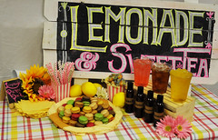 "Lemonade picnic Pack • <a style=""font-size:0.8em;"" href=""http://www.flickr.com/photos/85572005@N00/32675804350/"" target=""_blank"">View on Flickr</a>"
