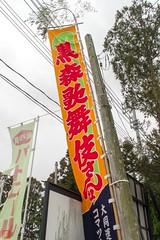 IMGP5377-9 (zunsanzunsan) Tags: 歌舞伎 神社 酒田市 黒森 黒森日枝神社 黒森歌舞伎