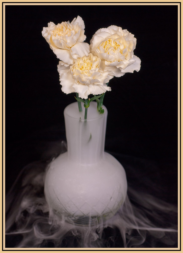 Carnations in a vase with Dry Ice