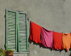 just red (penjelly) Tags: italien red italy orange rot window italia fenster shirts tuscany sassi wsche toskana fensterladen