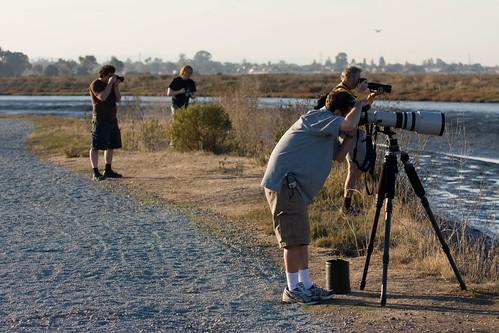 Bird photographers
