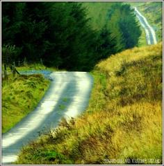 """IRELANDS """"ROUTE 66"""" (Edward Dullard Photography. Kilkenny, Ireland.) Tags: autumn kilkenny ireland mountain landscape photographic irland eire celtic hibernia emeraldisle gaelic irlanda irlande ierland dullard mountleinster ukandireland edwarddullard kilkenny1953 britishislesandireland societyedward"""