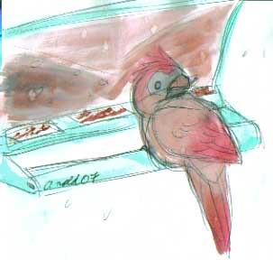 The Lady Cardinal - 12/13/07