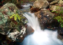 A Rush of Water (the waterfallhunter) Tags: desotostatepark lookoutmountain laurelcreek dekalbcounty fortpaynealabama