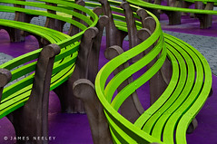 Undulations (James Neeley) Tags: nyc newyorkcity newyork color bench bravo curves undulations greenbenches stunningnikon flickr5 jamesneeley theperfectphotographer