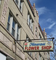 former Hawaii Flower Shop, Portage Park, Chicago (katherine of chicago) Tags: chicago portagepark storefronts florists signs plasticsigns