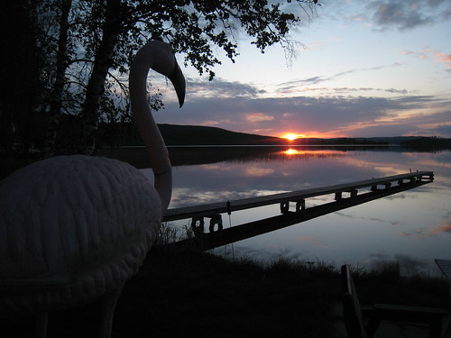 Sunset on lake Tavelsjön - with flamingo