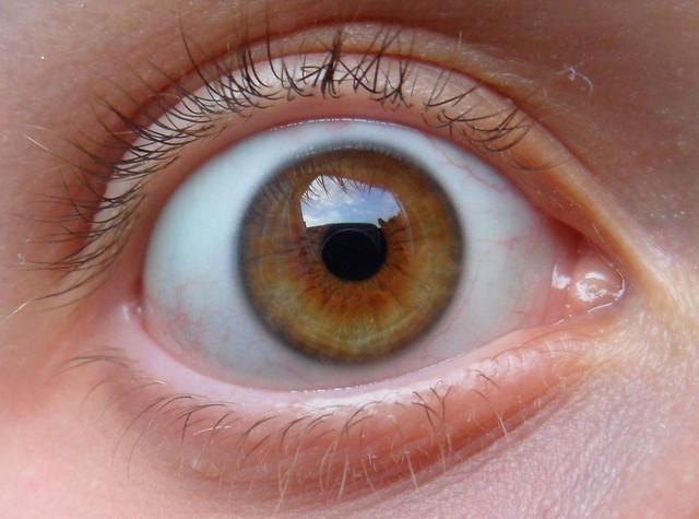 Freshlook Dimensions Sea Green >> Seagreen on my hazel eyes