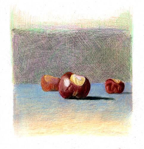 depth study - chestnuts